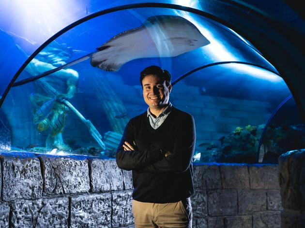 Rui Ferreira, director-geral do Sea Life Porto