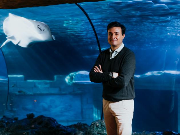 Rui Ferreira, director geral do Sea Life Porto