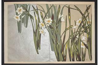 Exquisite Patterns: Japanese Textile Design