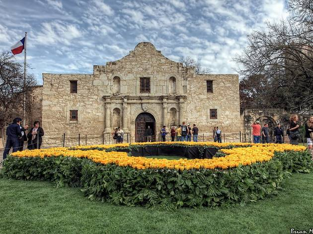 The best attractions in San Antonio