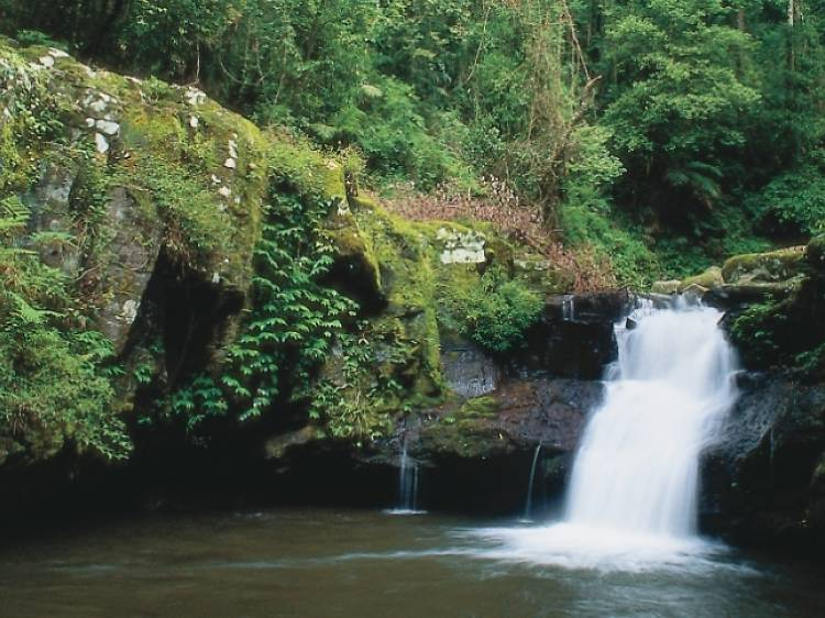 Cronan Creek Falls, Mount Barney