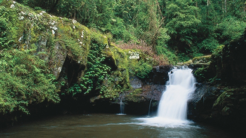 Cronan Creek Falls