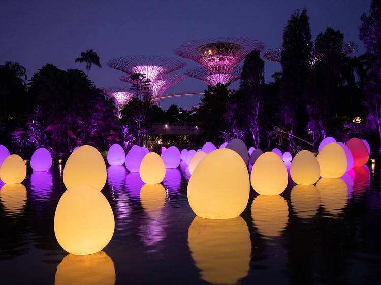 Step into a fusion of art, tech and nature