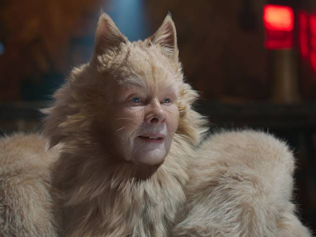 Cats review: You knew it was going to be strange
