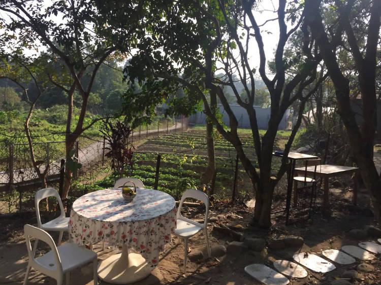Lam Tsuen Farm House