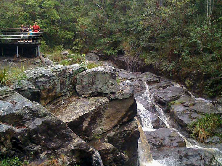 Simpson Falls, Mount Coot-tha