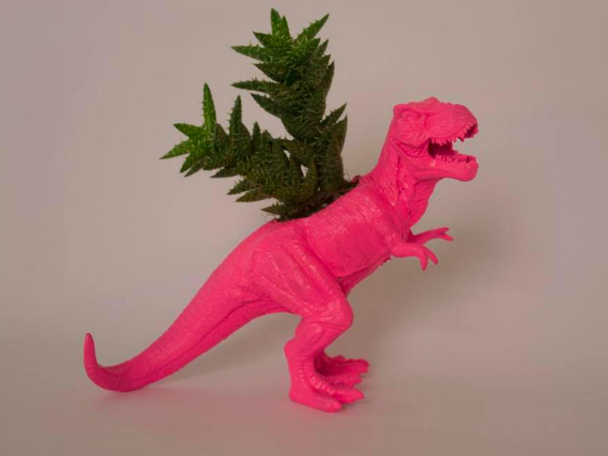 Maceta de dinosaurio de pangea plants