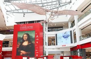 Think Like Leonardo da Vinci 500th