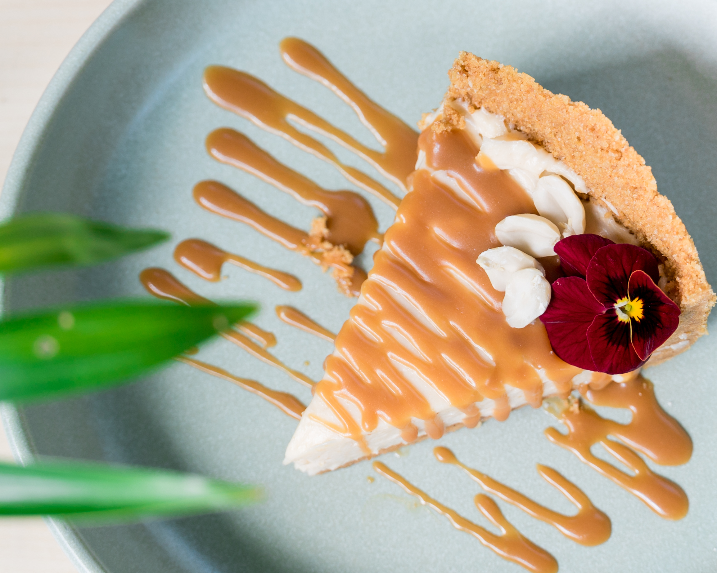 Cheesecake de manteiga de amendoim do Camélia Brunch Garden