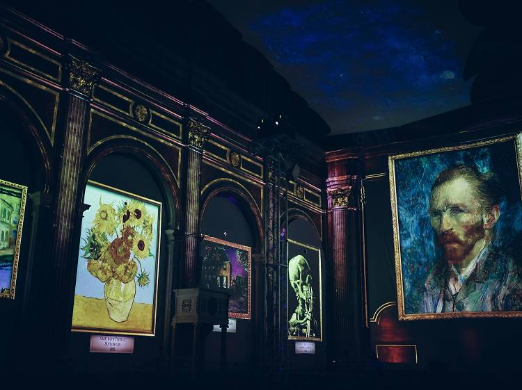 Van Gogh-ing to Israel: World-renowned exhibition to arrive in Herzliya this January