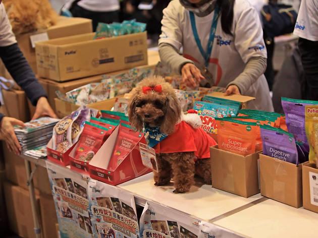 Hong Kong Pet Show