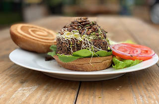 Smart Bites, Cricket Burger