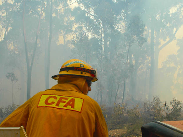 How to help bushfire victims in Melbourne