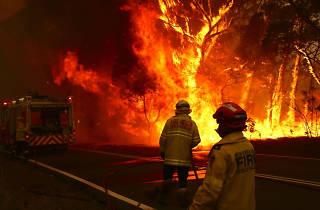 Shutterstock_australia bushfire