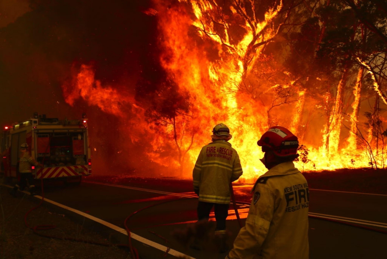 為澳洲山火救災出一分力