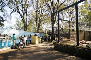 Yumemigasaki Zoo
