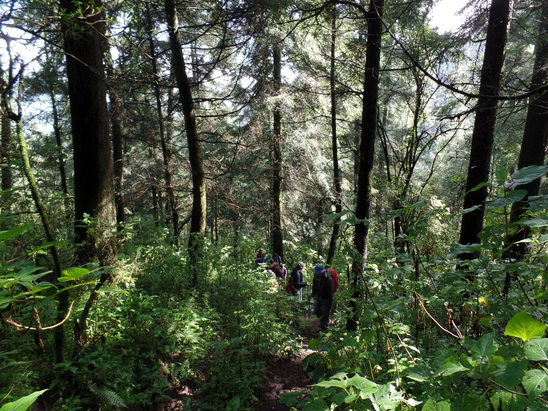 Experiencias en la naturaleza para relajarte sin salir de la CDMX
