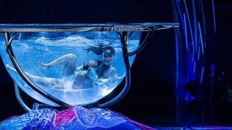 Cirque de Soleil: Amaluna