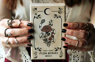 Libros de magia, tarot y botánica