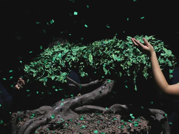 Huellas de manglar (Foto: Cortesía Arrecife Teatro)