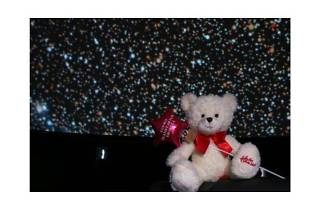 ハムリーズベアと楽しむロマンティックバレンタイン
