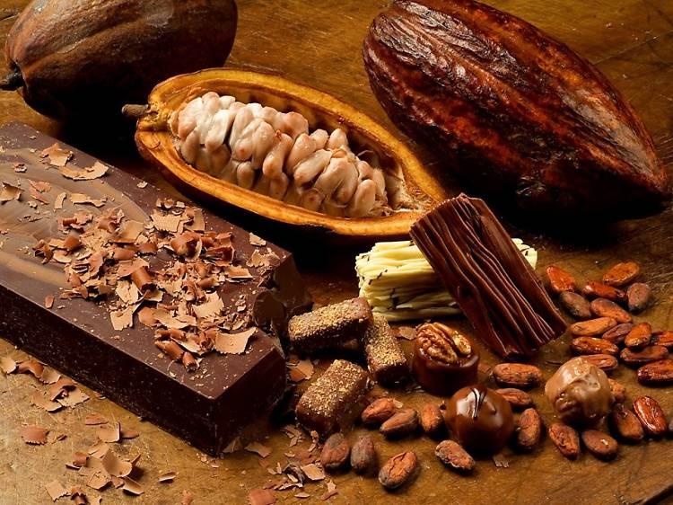 Ceremonia de mantras mexicanos con cacao
