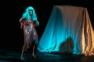 I'm a Phoenix, Bitch Sydney Festival 2020 supplied