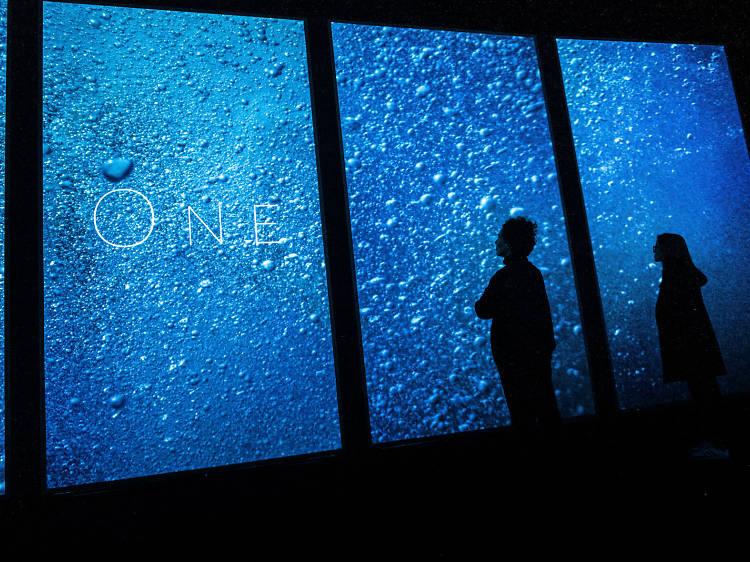 ONE | O mar como nunca o sentiu