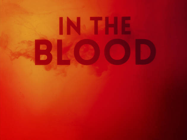 In the Blood, Donmar Warehouse 2020