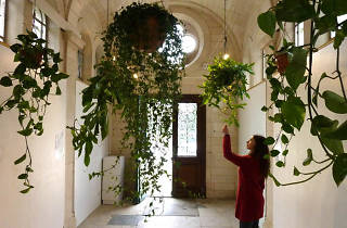 Akousmaflore Sensitive and interactive musical plants