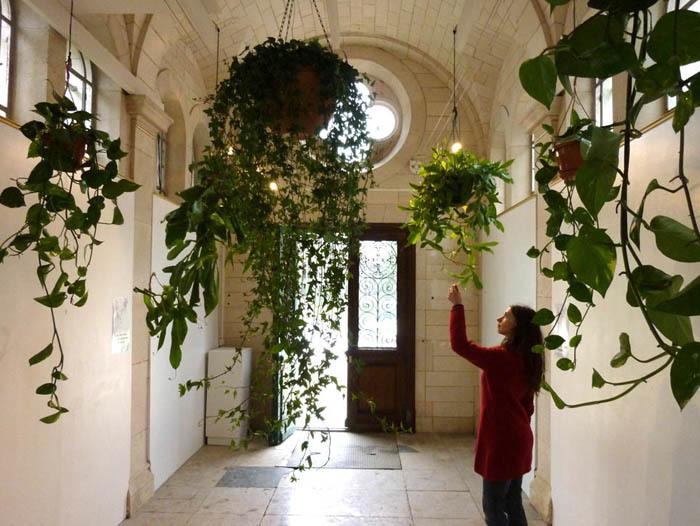 Akousmaflore: Sensitive and Interactive Musical Plants / Akousmaflore – osjetljive i interaktivne glazbene biljke