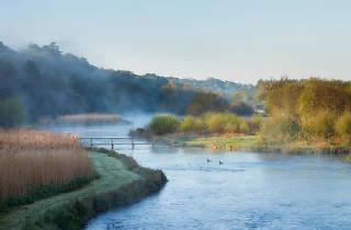 The River Test in Stockbridge