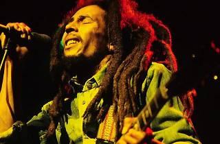 Celebrate Bob Marley's 75th Birthday at Reading 3