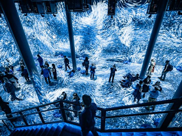 ARTECHOUSE submerge