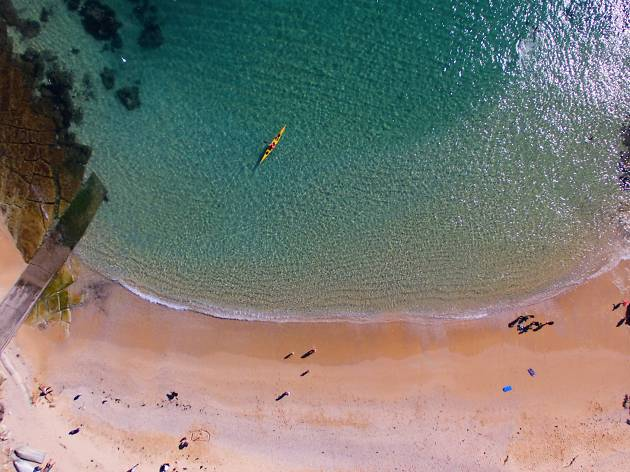 Ariel view of Shelly Beach Manly