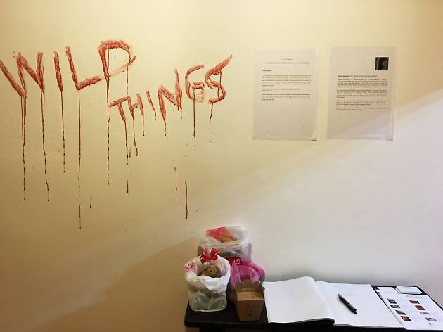 Wild Things Exhibition