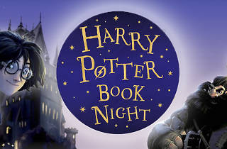 Harry Potter Book Night 2020