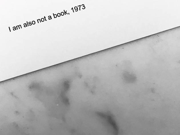 El que pot un llibre