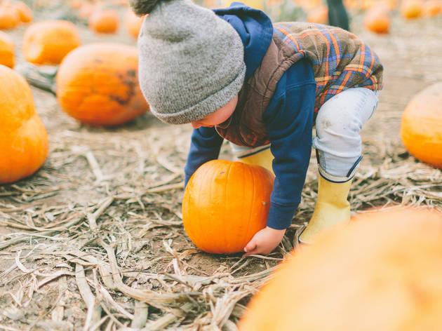 October events calendar for kids