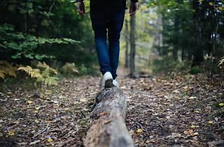 Hiking, hike