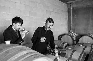 Winemakers from Pimpernel