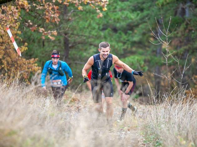 Papuk (Canicross) Trek & Trail