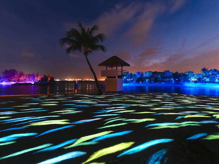 Engage your senses with Magical Shores