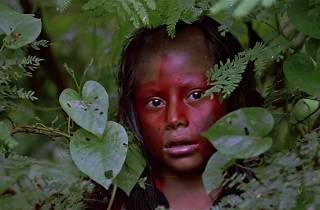 Young girl with tribal face paint on in a forest