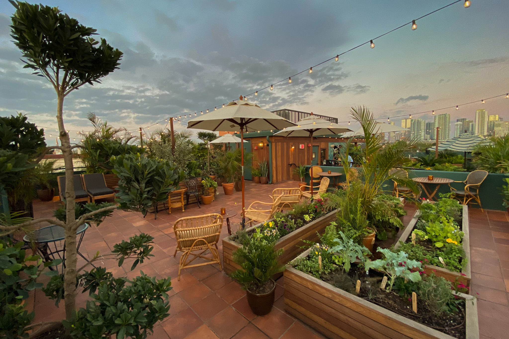 The absolute best rooftop bars in Miami, from Wynwood to South Beach