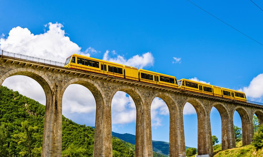Canari, tren groc