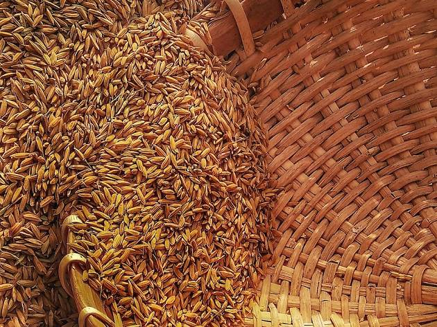 rice, grain