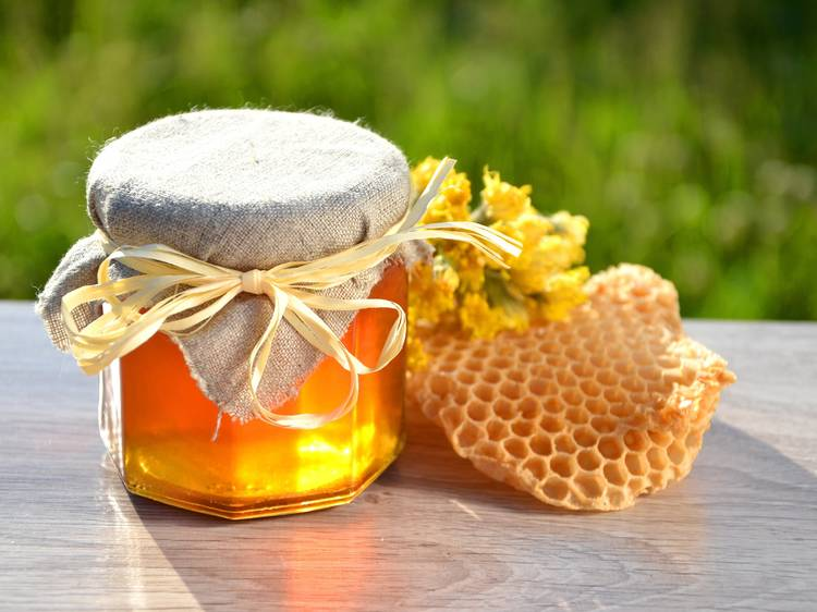 Days of Honey Delicacies of Central Istria