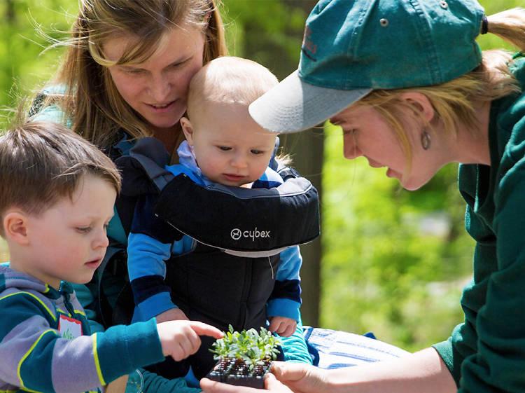 New York Botanical Garden Edible Academy