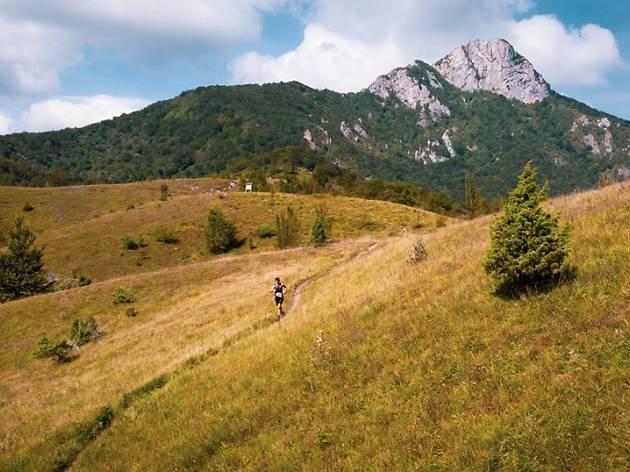 Ogulin Trail